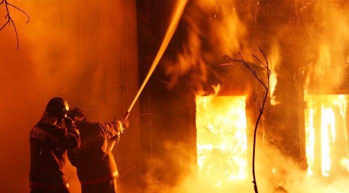 Два человека погибли и один пострадал в пожаре в Павшинской пойме.