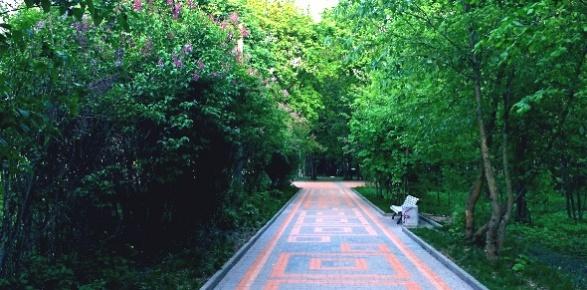 Пешеходный маршрут с Красногорска до Павшинской поймы