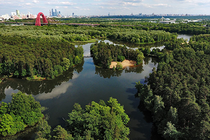 На двух московских пляжах запретили купание после прорыва канализации