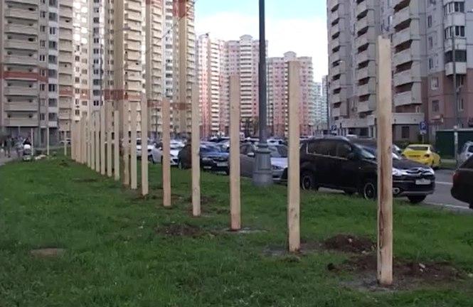 Жители против строительства многоуровневого паркинга