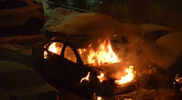 В Павшинской пойме произошел пожар, в котором полностью сгорела иномарка