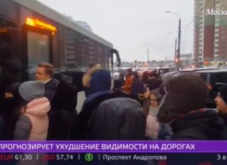 """Дополнительные автобусы могут ввести от Павшинской поймы до """"Тушинской"""""""