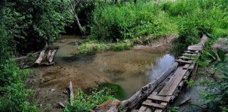 Реабилитацию реки Баньки в Красногорске планируется завершить к концу 2017 года