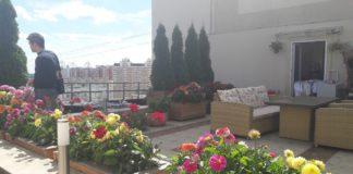 Оазис на крыше в Павшинской пойме вернут, если этого захотят жильцы