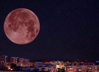 Жители Павшинской поймы одновременно увидят противостояние Марса и затмение Луны