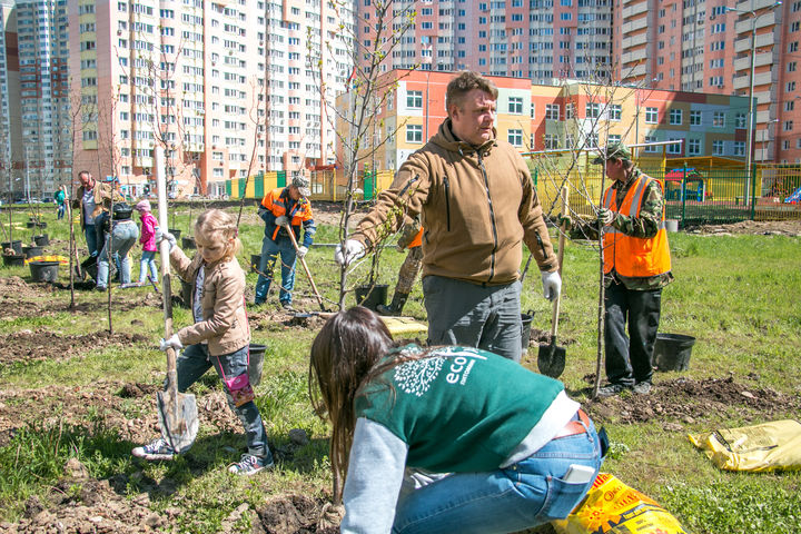 Более 26 тыс деревьев посадят в Красногорске на акции «Наш лес»