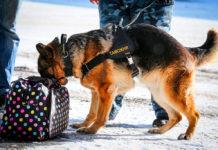 Отделение Сбербанка в Павшинской пойме эвакуировали из‑за бесхозного пакета
