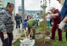 Около 7,2 тыс деревьев посадят в Павшинской пойме в ходе экоакции 21 сентября