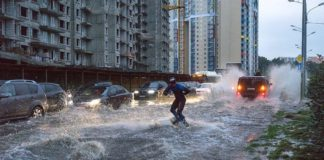 Мосгордума выделила деньги на решение проблемы очистных сооружений в Павшинской пойме