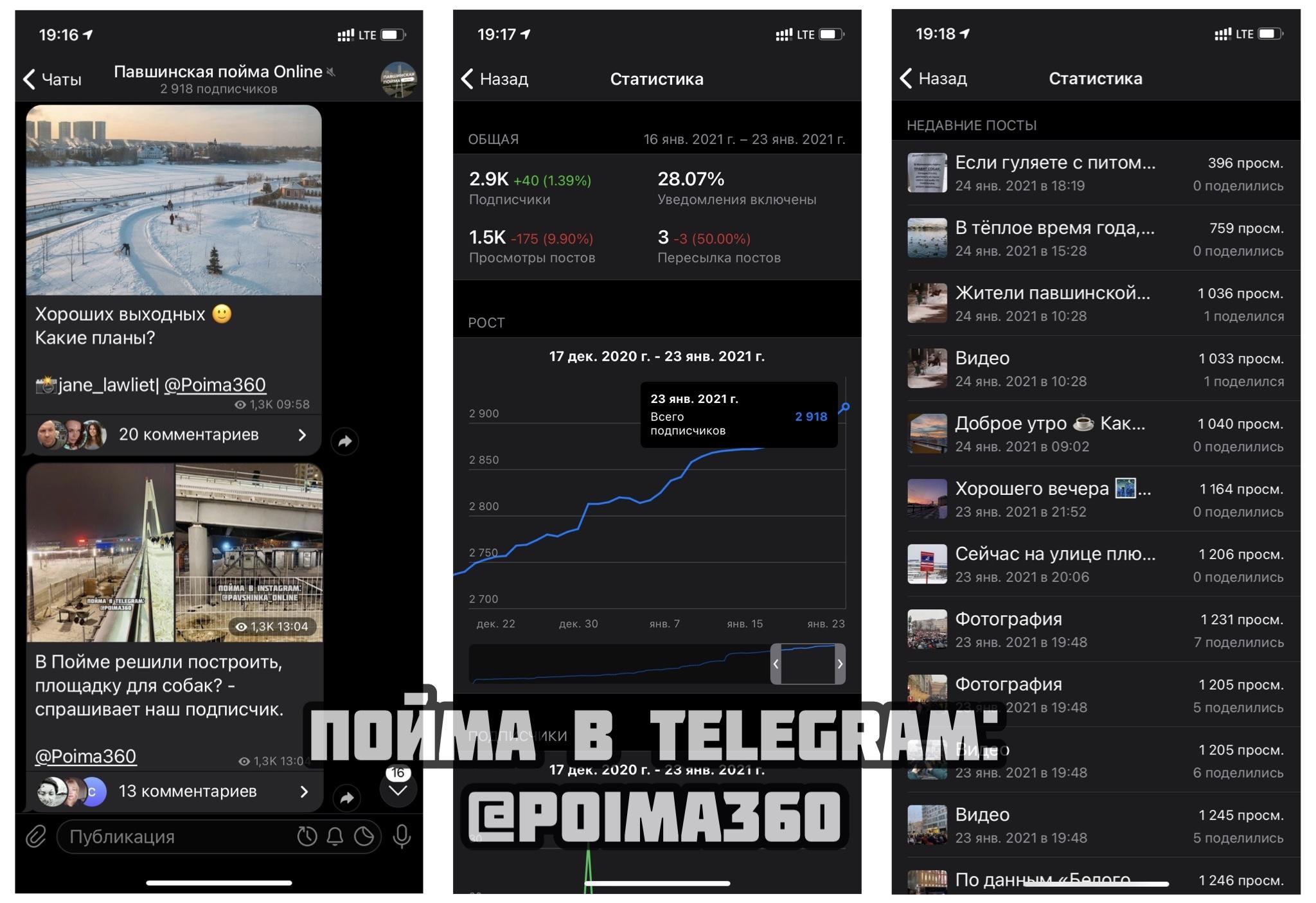 "Telegram-канал ""Павшинская пойма Online""."